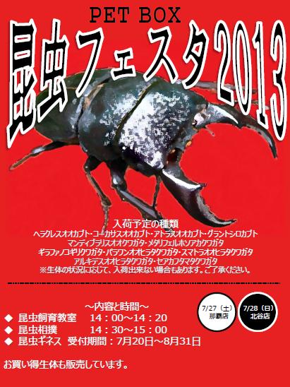 昆虫フェスタ2013