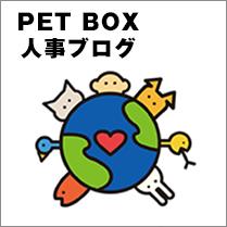 PET BOX人事ブログはこちらから